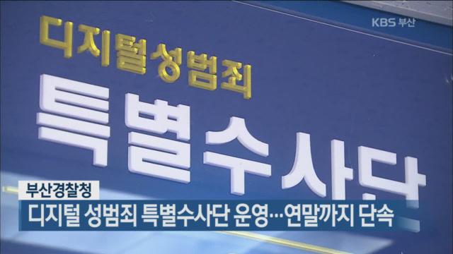 부산경찰청, 디지털 성범죄 특별수사단 운영…연말까지 단속