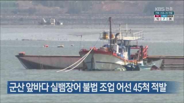 군산 앞바다 실뱀장어 불법 조업 어선 45척 적발
