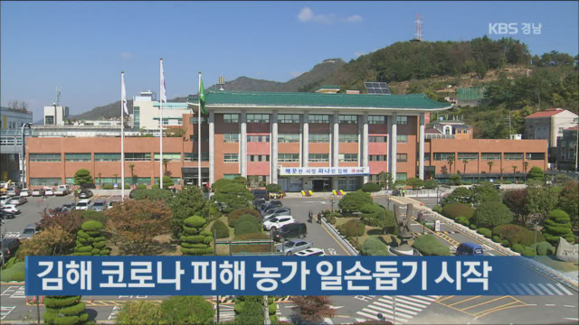김해 코로나19 피해 농가 일손돕기 시작