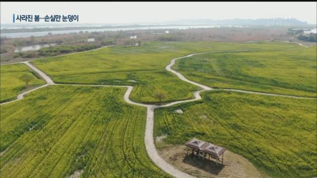 축제 곳곳 취소에 충남 '경제손실액 1,100억 원'