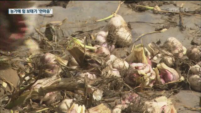코로나19 사태 속 인력난 농가에 힘 보태기 한마음