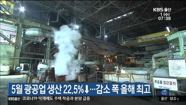 5월 광공업 생산 22.5%↓…감소 폭 올해 최고