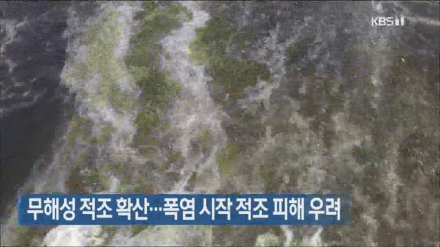 무해성 적조 확산…폭염 시작 적조 피해 우려